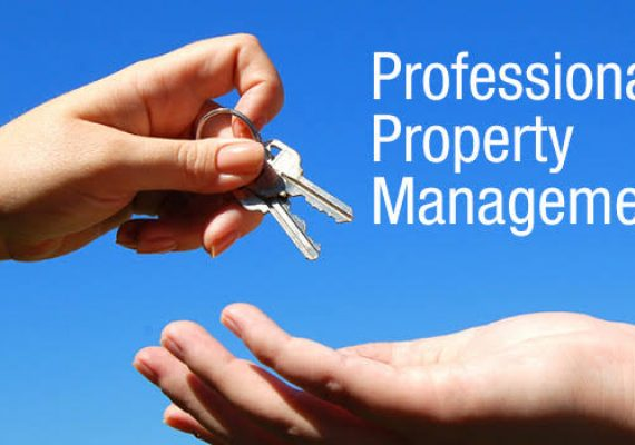How To Do Professional Property Management Processes?